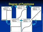 degree of fuzziness