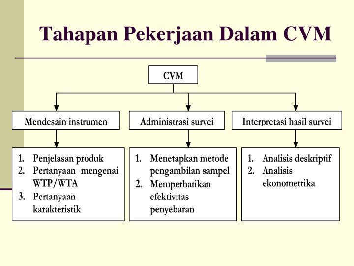 Tahapan Pekerjaan Dalam CVM
