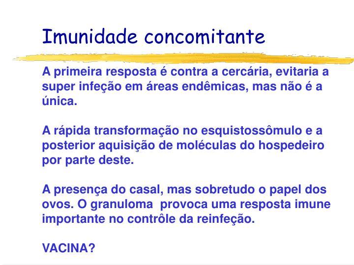 Imunidade concomitante