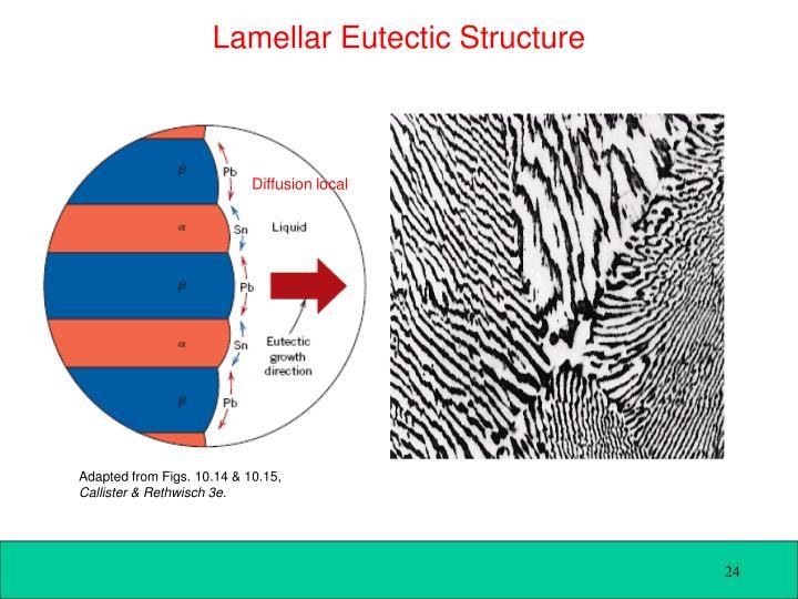 Lamellar Eutectic Structure