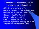 different denomination of mononuclear phagocyte