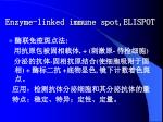 enzyme linked immune spot elispot