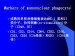 markers of mononuclear phagocyte