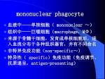 mononuclear phagocyte