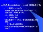 peripheral blood
