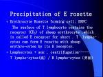 precipitation of e rosette