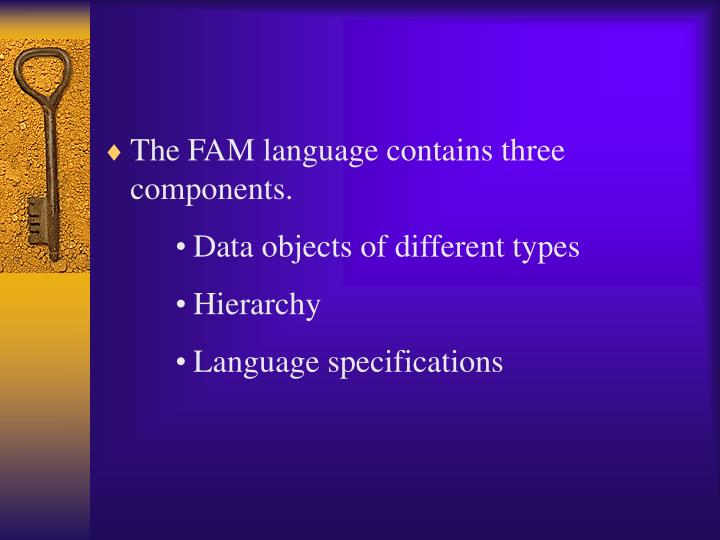 The FAM language contains three components.