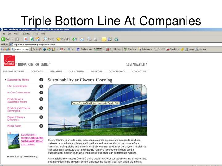 Triple Bottom Line At Companies