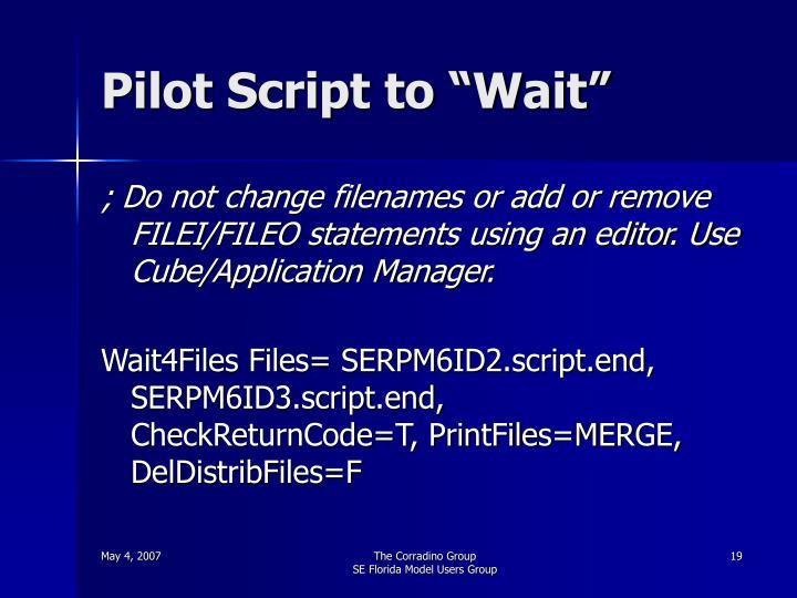 """Pilot Script to """"Wait"""""""