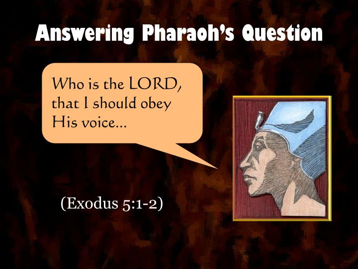 answering pharaoh s question n.