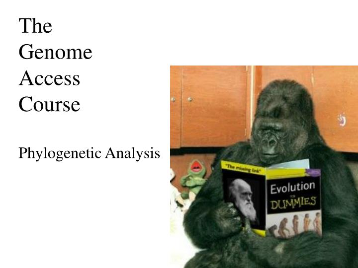 the genome access course phylogenetic analysis n.