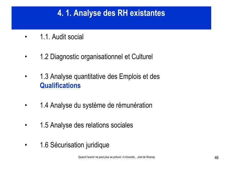 4. 1. Analyse des RH existantes