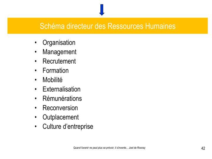 Schéma directeur des Ressources Humaines