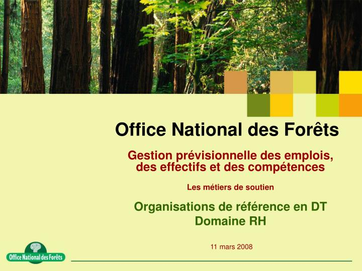 office national des for ts n.