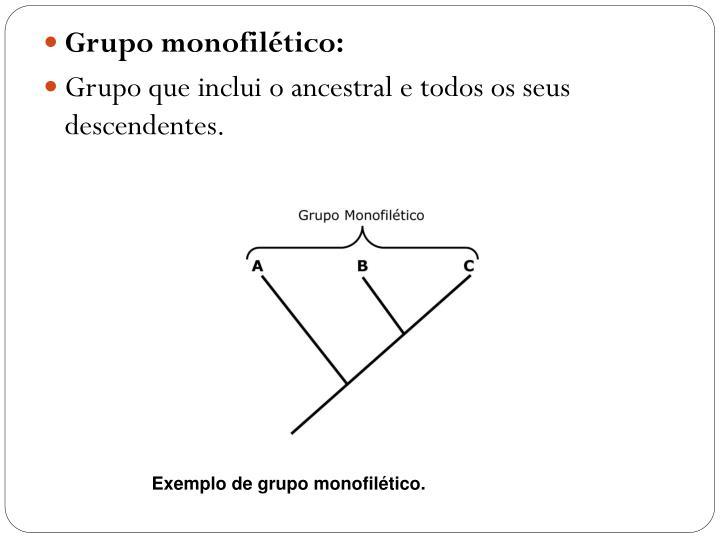 Grupo monofilético: