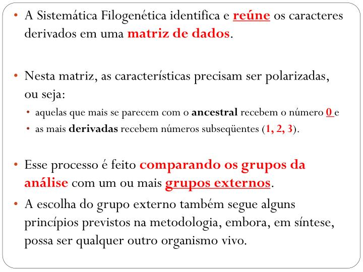 A Sistemática Filogenética identifica e