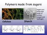 polymers made from sugars