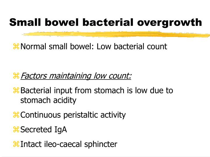 Small bowel bacterial overgrowth