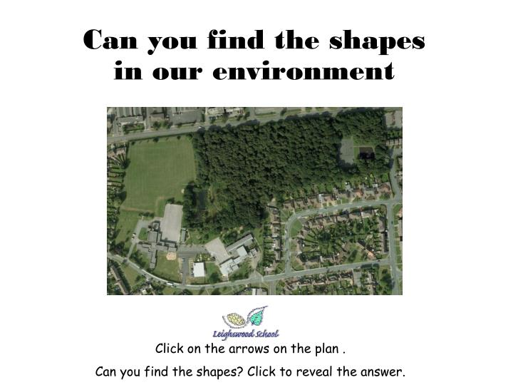 can you find the shapes in our environment n.
