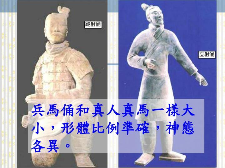 兵馬俑和真人真馬一樣大小,形體比例準確,神態各異。