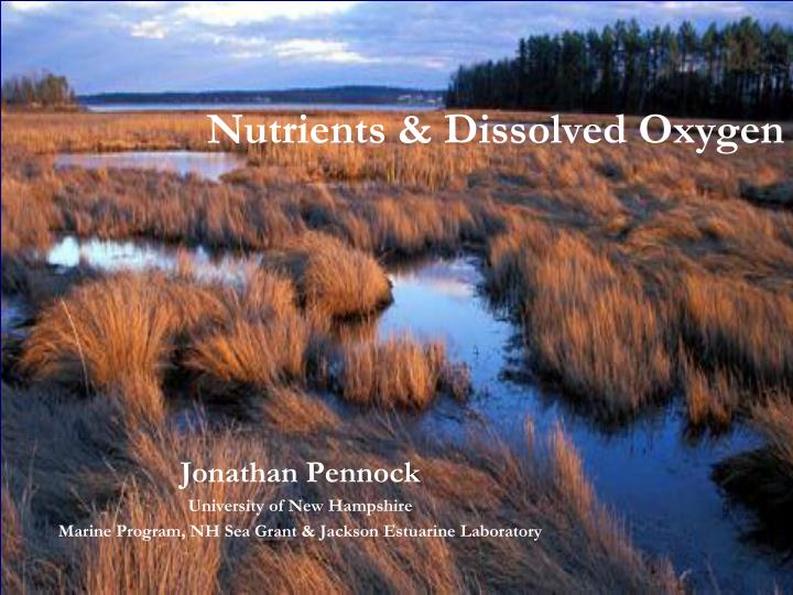 nutrients dissolved oxygen n.