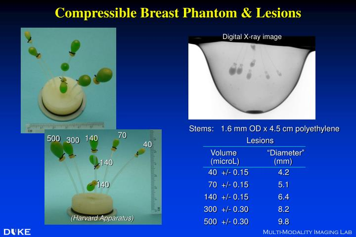 Compressible Breast Phantom & Lesions