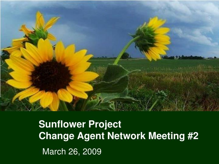 sunflower project change agent network meeting 2 n.