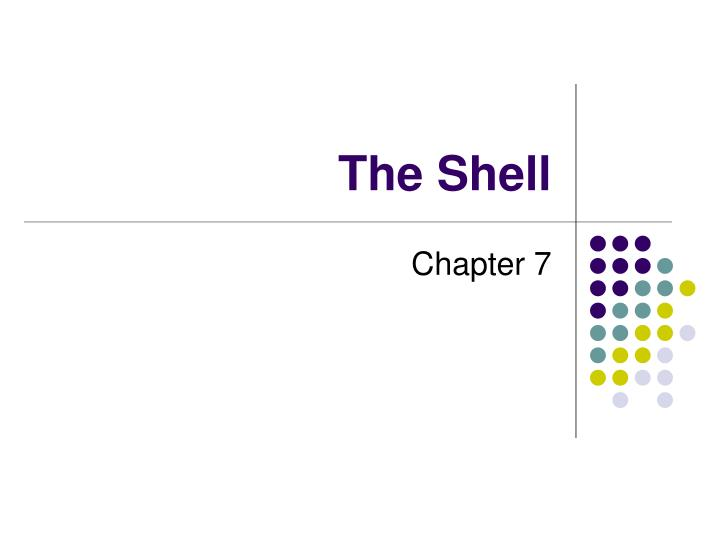 the shell n.