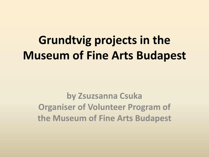 grundtvig projects in the museum of fine arts budapest n.