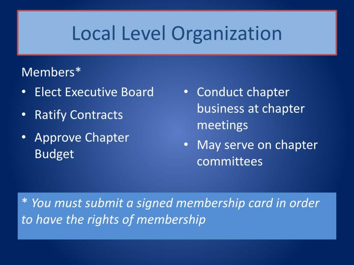 Local Level Organization