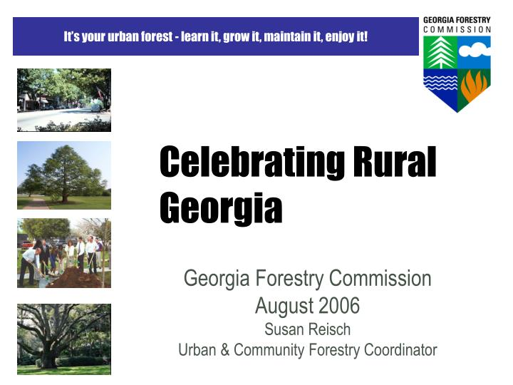 celebrating rural georgia n.