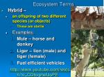 ecosystem terms3