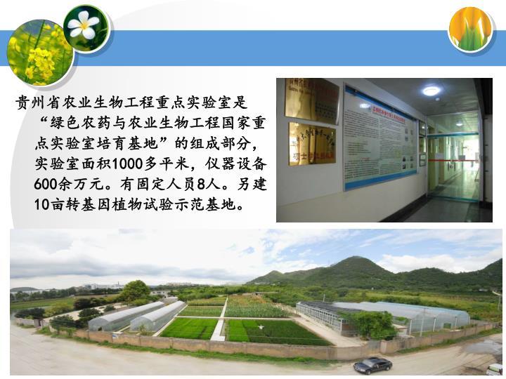 """贵州省农业生物工程重点实验室是""""绿色农药与农业生物工程国家重点实验室培育基地""""的组成部分,实验室面积"""