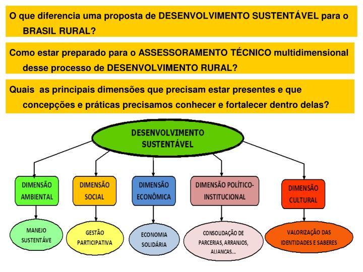 O que diferencia uma proposta de DESENVOLVIMENTO SUSTENTÁVEL para o BRASIL RURAL?
