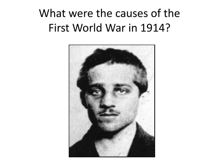 what were the causes of the first world war in 1914 n.