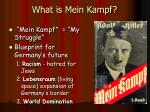 what is mein kampf