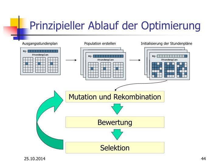 Prinzipieller Ablauf der Optimierung