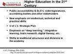 higher education in the 21 st century