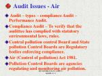 audit issues air