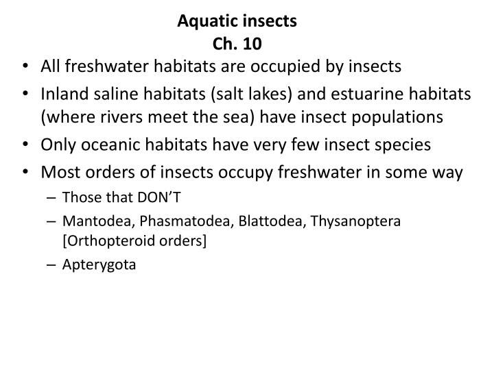 aquatic insects ch 10 n.