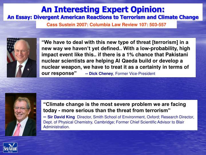 An Interesting Expert Opinion: