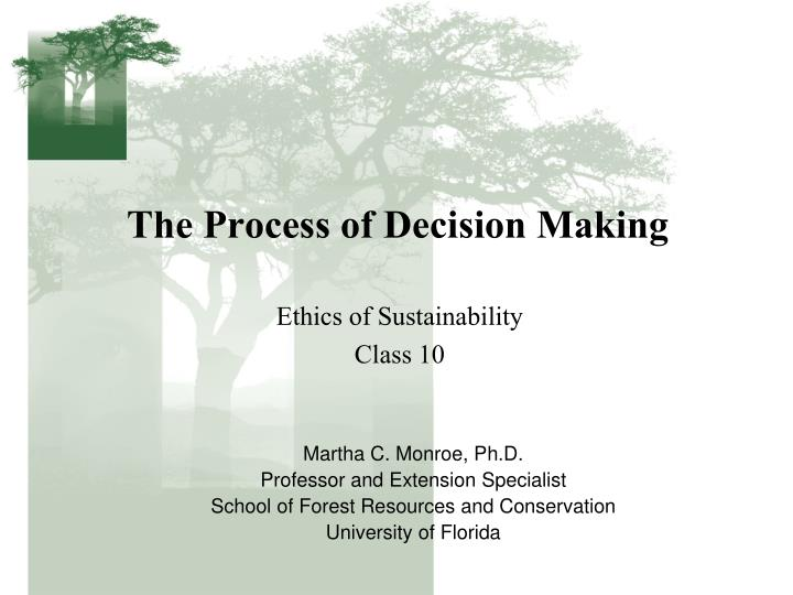 the process of decision making n.