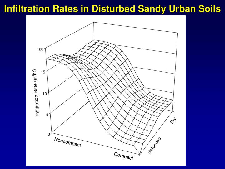 Infiltration Rates in Disturbed Sandy Urban Soils
