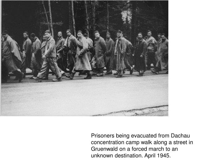 Prisoners being evacuated from Dachau concentration camp walk along a street in Gruenwald on a forced march to an unknown destination. April 1945.