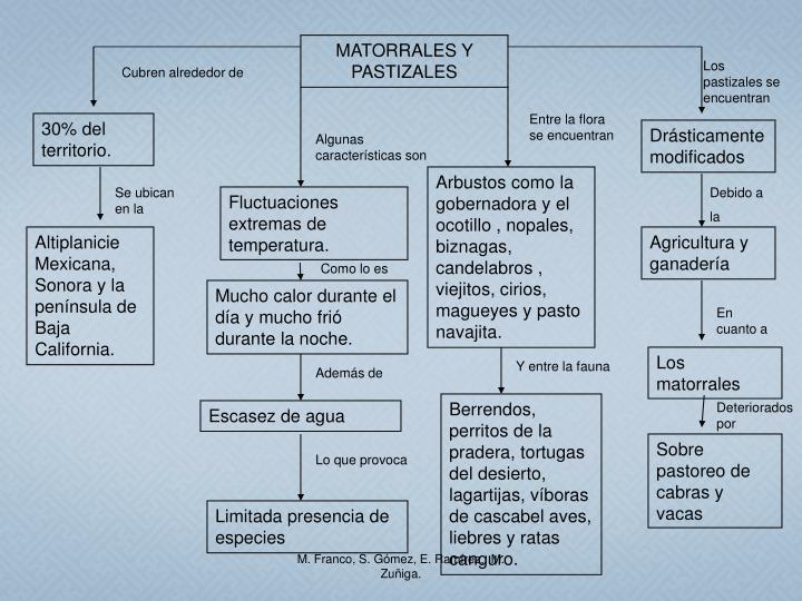 MATORRALES Y