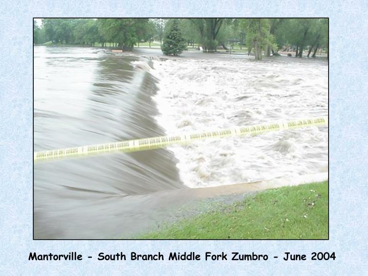 Mantorville - South Branch Middle Fork Zumbro - June 2004
