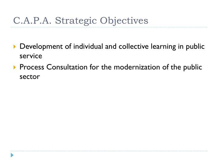 C.A.P.A. Strategic Objectives