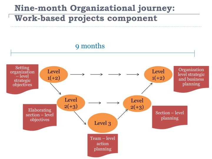 Nine-month Organizational journey: Work-based projects component
