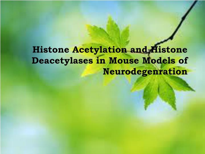 Histone Acetylation and Histone