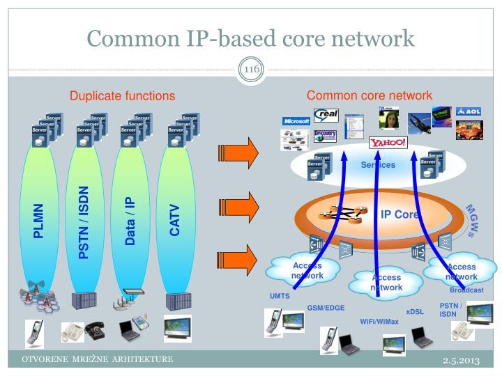 Common IP-based core network